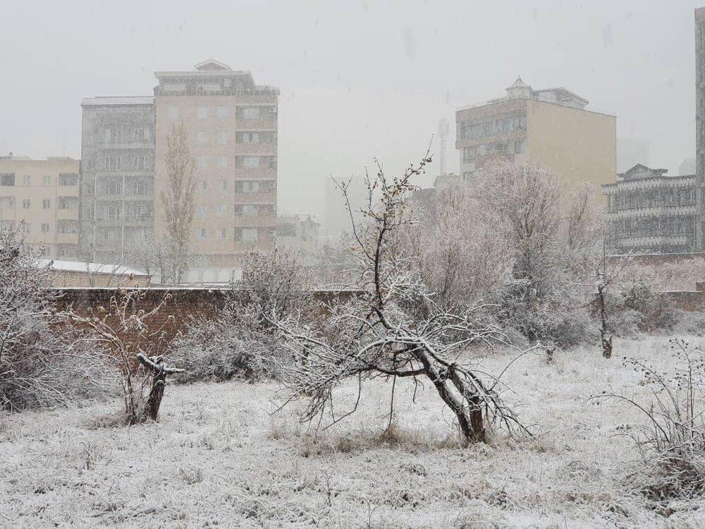 این شهرها منتظر بارش برف باشند