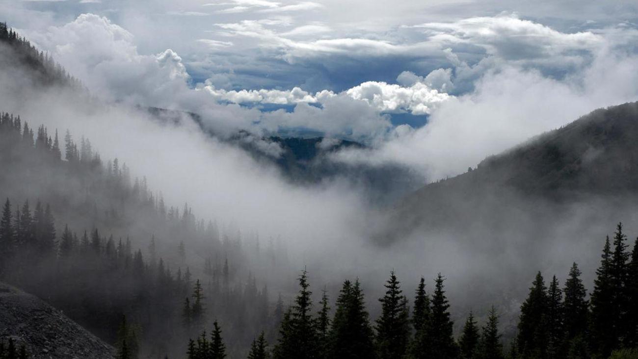 زوج جوان در جنگل ابر شاهرود مفقود شدند