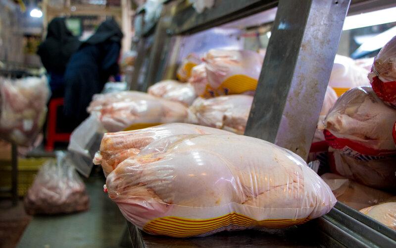 عرضه مرغ  ۱۸هزار و ۵۰۰ تومانی در بازار