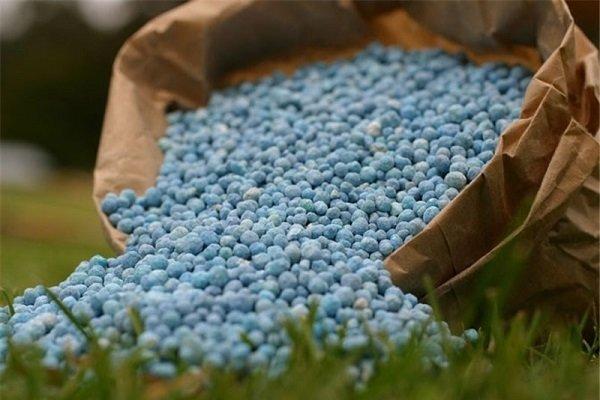 در کم کردن هزینه تمامشده تولید، هیچ حمایتی از کشاورز صورت نمیگیرد